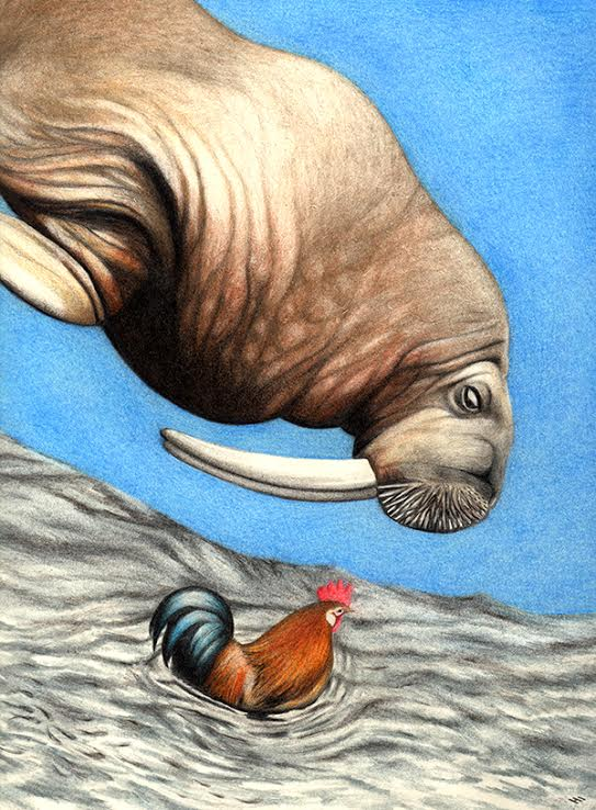 Walrus in the Sky