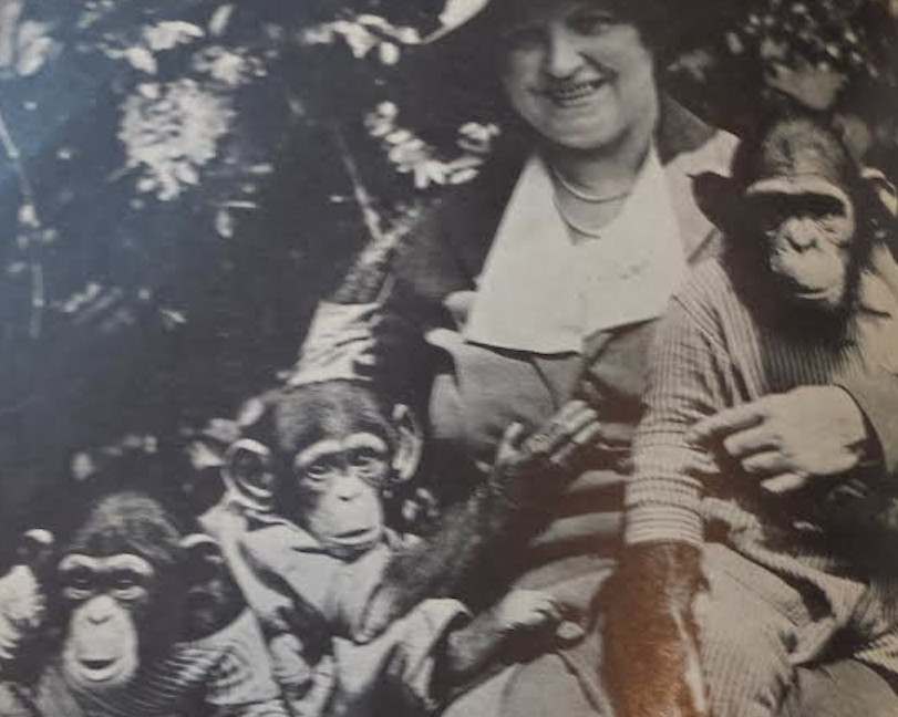 Gertrude Lintz and Chimps