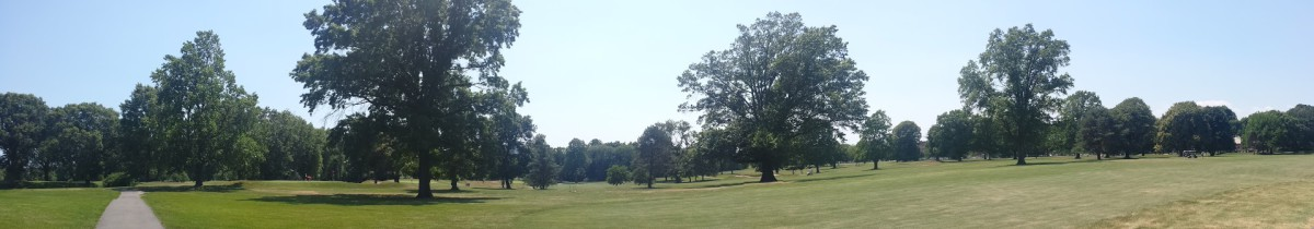 Dyker Golf Course panorama
