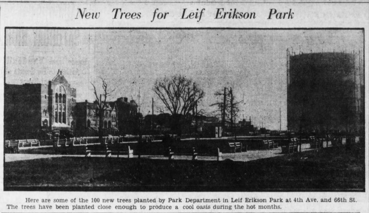 Leif Ericson Park trees
