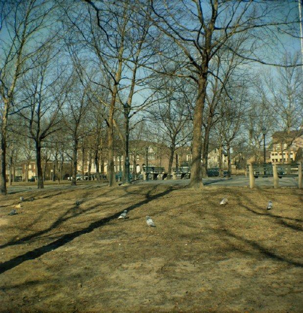 Leif Ericson Park