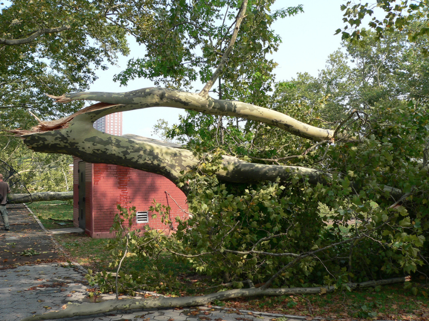 Leif Ericson Park tornado